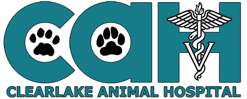 Clearlake Animal Hospital